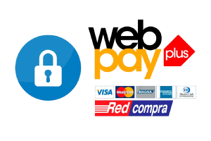 logo-web-pay-removebg-preview.png